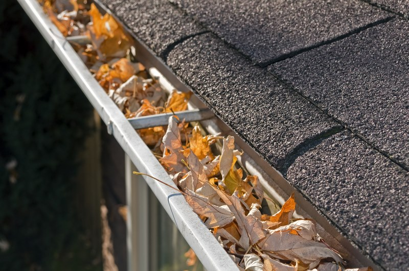 Gutters Full With Leaves