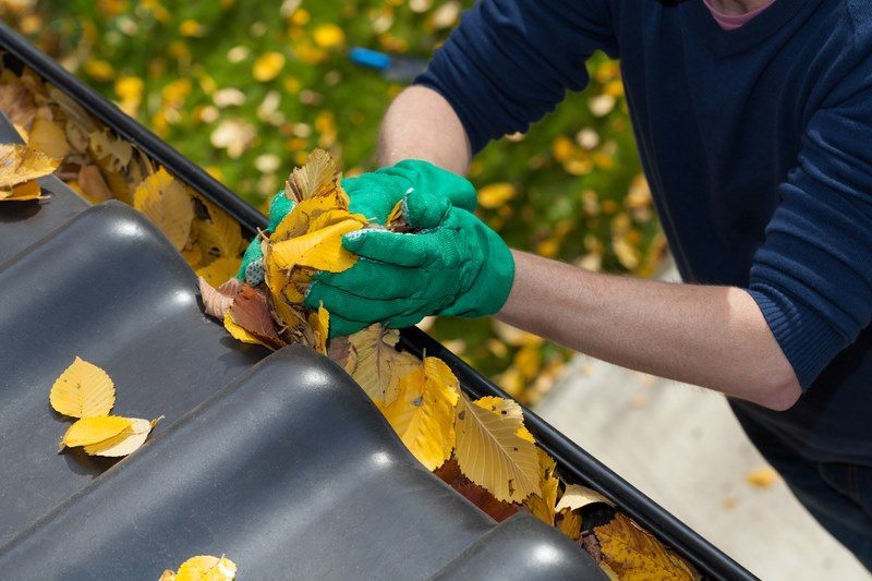 man taking leaves out of gutter