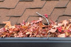blocked gutter leaves