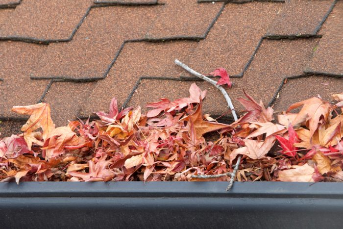 gutters blocked with leaves