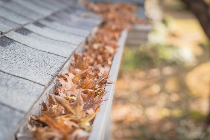 blocked gutters filled with leaves